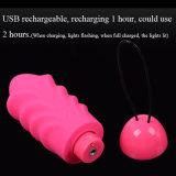 高品質USBの再充電可能な振動の卵のベンWaの球のジャンプは女性のための女性のKegelの腟の堅いバイブレーターの性のおもちゃに卵を投げつける
