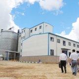 80 Tonnen-Weizen-Getreidemühle-Fräsmaschine installiert in Algerien
