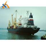 Frachtschiff des Massengutfrachter-27000dwt