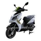 Motociclo elettrico della batteria di litio di alta qualità 800W 1000W 1200W (LX)