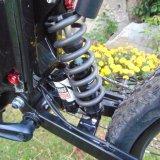 Bici eléctrica china con 20ah las ruedas del motor 2 de la batería 48V 1000W