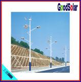 Panneau solaire du pouvoir 100W d'IP65 12V 40W dans le réverbère solaire