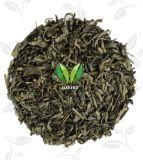Tè caldo famoso 9371 di Chunmee di verde di vendita del cinese