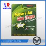 Trappe collante de colle de souris de rat de trappe intense de colle