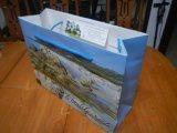 Sac de cadeau de sac à provisions de sac de papier d'imprimerie de couleur