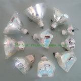 مسلاط مصابيح ([برو100-250و])
