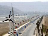 Lâmina Fixa de 200W gerador de Turbinas Eólicas