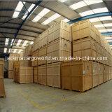 Verschiffen, Versorgungskette, Zollabfertigung und Lager-Services für Panelssteel Spulen-Streifen-Stahlblech-Platte