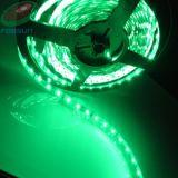 LED 리본 지구 (FRS-L5M-300-L1)