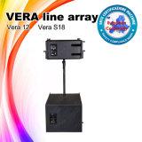 Vera12 kies Systeem van de Serie van de Lijn van de Macht van 12 Duim het Super Openlucht uit