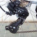Mecanismo impulsor máximo de la bici de E con el marco de la aleación de aluminio