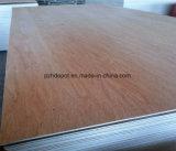 Madera contrachapada comercial vendedora caliente de 1220X2440m m Okoume