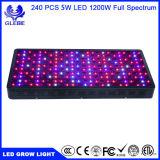 1000W grandir la lumière à LED à spectre complet pour l'intérieur des plantes de légumes et fleurs, effet de serre de jardin hydroponique Feux de croissance des plantes (12-bande 5W/LED)