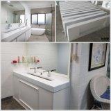 カスタム固体Surfa⪞ Eの石造りの樹脂の浴室の洗面器