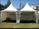 Tende del Pergola di alta qualità per gli eventi che Wedding e che fanno pubblicità