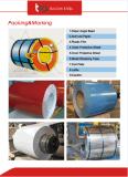 La vendita calda ha preverniciato la bobina d'acciaio galvanizzata