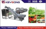 대규모 식물성 과일 음식 세탁기