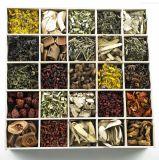 Natürlicher Pflanzenauszug und Kräuterauszug für Nahrungsmittel, Getränk, Kosmetik