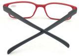 R17011 고아한 Hotsale 작풍 확대경은, 남녀 공통 색깔 안경알을 읽었다