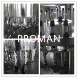 De eenvoudige Bottelmachine van het Mineraalwater van de Verrichting Volledige Automatische