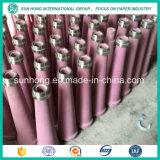 Gutes Verschleißfestigkeit-Massen-Reinigungsmittel für die Papierherstellung