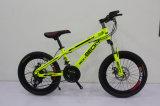 20 pouces Vélo de montagne en acier au carbone (MTB) être-009
