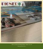 panneau de particules enduit de mélamine de couleur de gris de 8mm pour Dubia