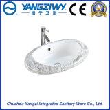 Bacino sanitario di ceramica di arte degli articoli (YZ1305)
