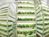 18W LED에 의하여 통합된 LED는 관상 식물을%s 가벼운 관을 증가한다