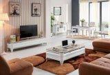 Basamento della TV, basamento di marmo della TV (DS-2025)