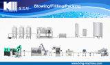18-18-6 impianto di imbottigliamento automatico dell'acqua minerale del macchinario da vendere
