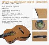 Guitarra llana principal superior doble china del concierto