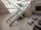 Faltende Treppenhaus-hölzerner Schritt-gerade Treppe mit Geländer