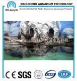 Globo material de acrílico modificado para requisitos particulares de los pescados del proyecto del acuario