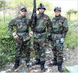 좋은 품질 위장 육군 전투 제복 Acu