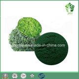 Выдержка Spirulina ранга натуральных продуктов высокая - протеин 60%, 65%