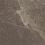Sechs Gesichts-Kleber-Blick-Porzellan-Fußboden-Fliese für Kaufhaus