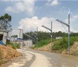 Solarwind 50W alle in einem Straßenlaterne-System für Garten-Beleuchtung in Südafrika