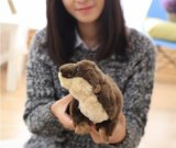 45cm Cute Animal Mouse Plush Toy