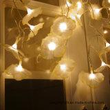 Het Licht van het Gordijn van het Festival van de decoratieve IP44 LEIDENE Vakantie van Kerstmis