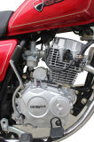 Motocicleta Gn de 150cc para venda quente muito popular