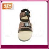 Neues Entwurfs-Strand-Sandelholz für Verkauf