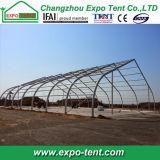Tente extérieure en aluminium de sport de courbe pour le tennis