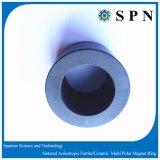De ceramische/Magneet van het Ferriet voor Sensoren, Detectors, Motor, Radar