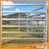 L'iarda galvanizzata del bestiame del tubo con l'ovale recinta il rifornimento della fabbrica