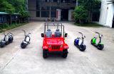 Fabbrica di Yongkang che vende il motorino elettrico più poco costoso di 60V 1000W Seev Citycoco/Citycoco con Ce (JY-ES005)