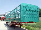 Des China-40ton Wellen-halb Schlussteil Lagerhaus-Sattelschlepper-3