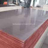 Signal Quality Professional Brown /Black Film Faced Plywood To beg