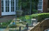 تصميم حديثة حديقة سياج زجاجيّة/[ستينلسّ ستيل] حنفيات درابزين زجاجيّة