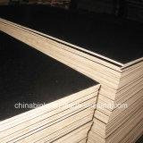 La construcción de madera de eucalipto de melamina WBP Film enfrenta la madera contrachapada